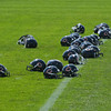 Chicago Bears 2010 : 